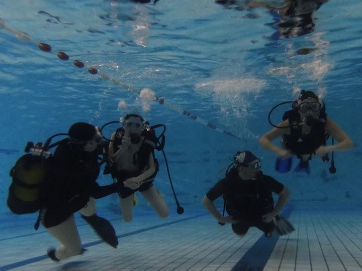 Baptèmes à la piscine Georges-Hermant